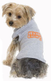 aspca tshirts for dogs