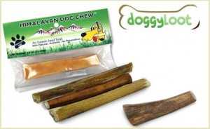 doggyloot sampler pack of dog chews