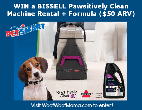 Win A Bissell Pawsitively Clean Carpet Rental Formula
