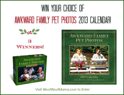 Awkward Family Pet Photos 2013 calendar giveaway