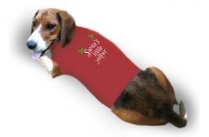 dog shirt custom design