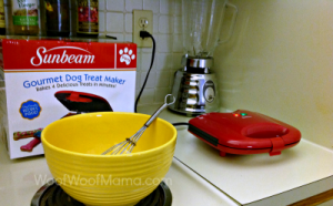 test kitchen for dog treat maker