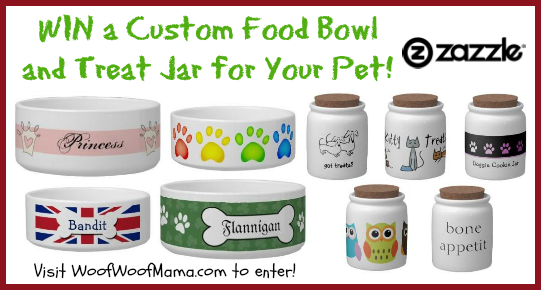 zazzle pet giveaway