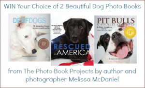 dog photo books by Melissa McDaniels