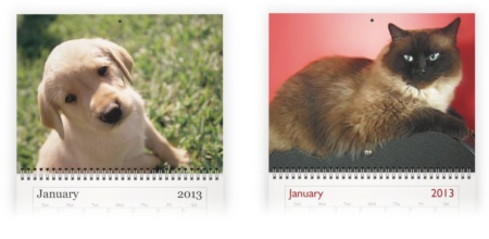 make your own pet photo calendar