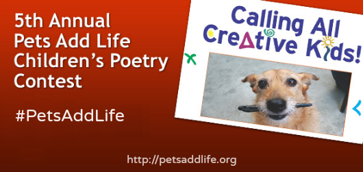 poetry contest for kids