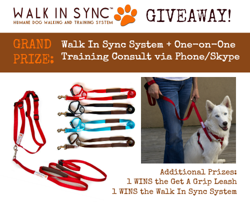Walk In Sync Giveaway