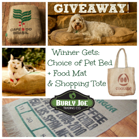 eco-friendly pet bed and gear