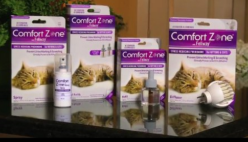 comfort zone for cats, helps stop scratching furniture and urine marking
