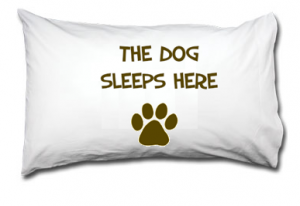 The dog sleeps here pillow