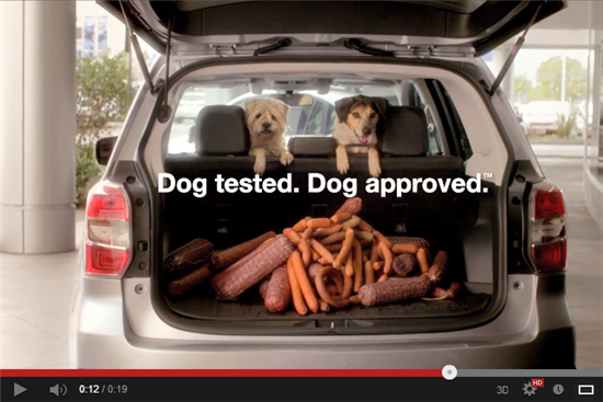 dog tested Subaru Tailgate video