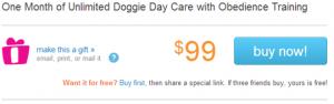 dog training deal
