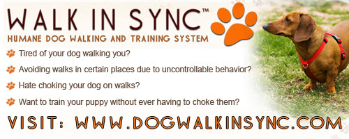 humane dog training