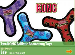 kong boomerang dog toy