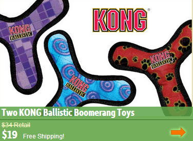 kong boomerang dog toy