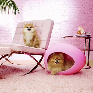 pei pod pet beds for dogs and cats