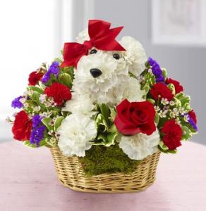 Valentine's flowers cute dog
