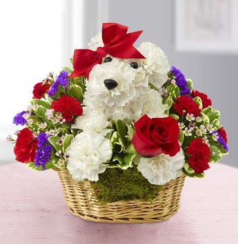 Valentine's flowers cute dog