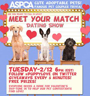 ASPCA valentines