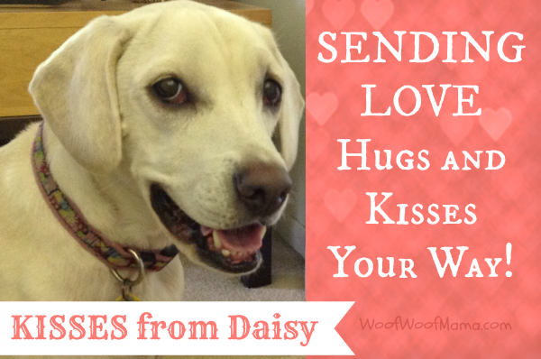 Daisy valentines day kisses