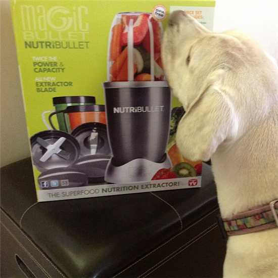 Our Nutribullet arrived