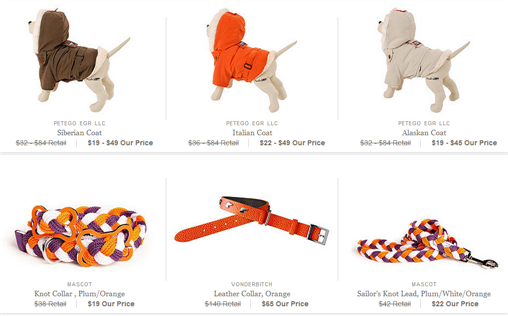 designer pet gear