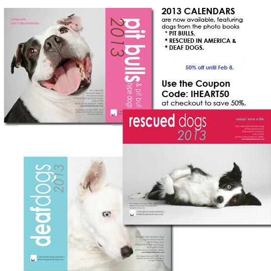 dog calendar sale