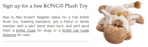 free kong toy for dog or cat