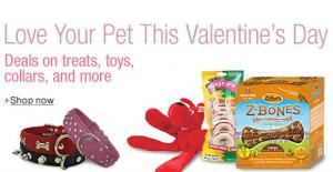 Amazon love your pet sale