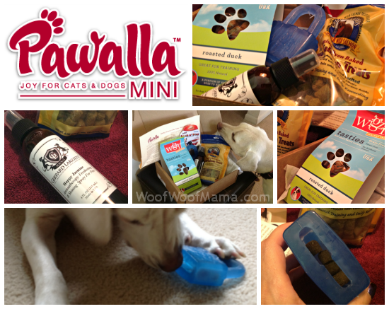 Pawalla Mini Box for Dogs
