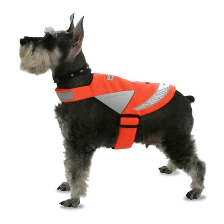 pet safety vest for night walks