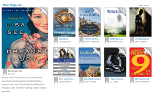 popular kindle library books