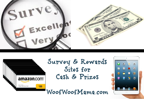 earn cash and rewards for taking surveys