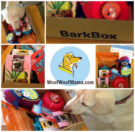BarkBox Promo Code