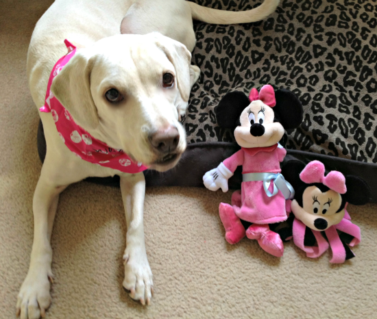 Daisy Disney dog toys