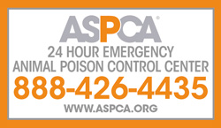 pet-poison-control-aspca