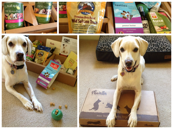 Pawalla Box for Dogs, what's inside plus promo code discounts