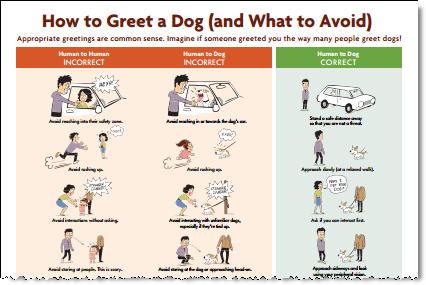 greet dog poster