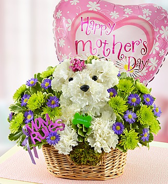 Mother's Day Flowers for dog lovers