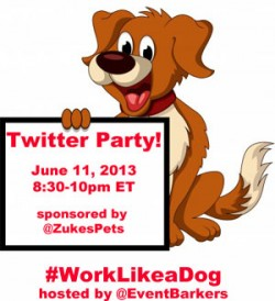 twitter party dog