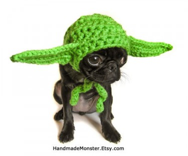 yoda hat for dogs