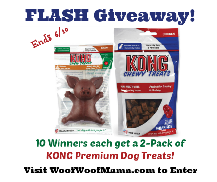 KONG Treats flash giveaway