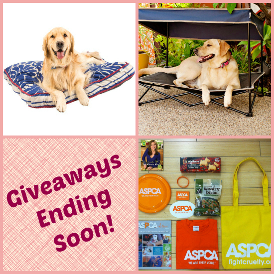 pet prizes for giveaways ending in June