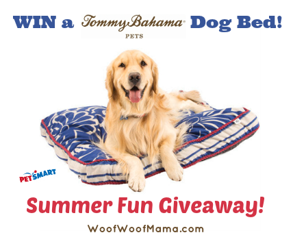Tommy Bahama Dog Bed Giveaway!