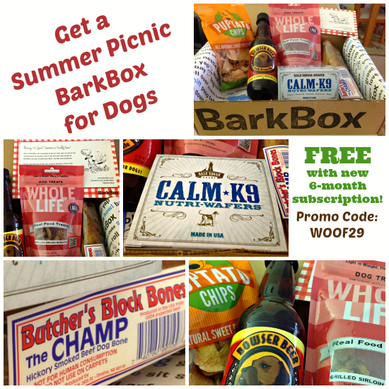 summer picnic offer