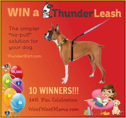 Win a ThunderLeash for Your Dog! 10 Winners
