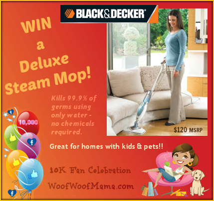 Win a Deluxe Steam Mop for fast, chemical free cleaning!