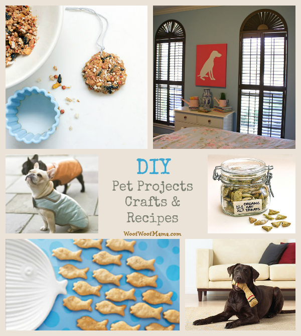 diy pet projects, crafts and recipes
