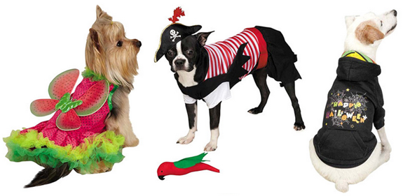 cute pet halloween costumes