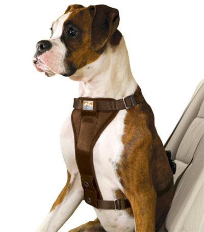 dog safety harness for truck or car